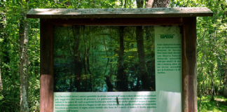 parco nazionale circeo