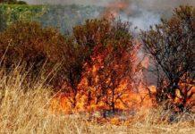 incendio-piromane