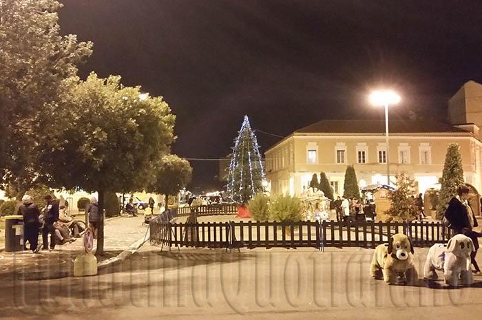 Bando CCIAA Frosinone Latina per contributi ai Comuni in vista del Natale