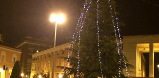 albero_natale_latina