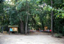 Parco-Circeo
