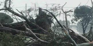 uragano Terracina