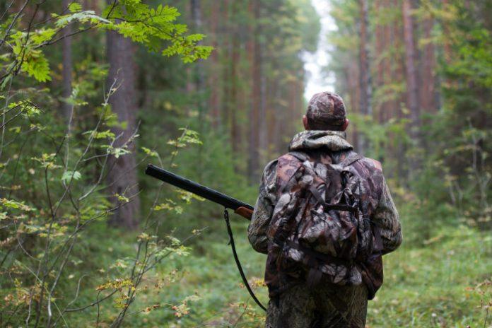 caccia-cacciatore