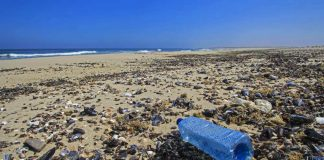 spiagge plastic free