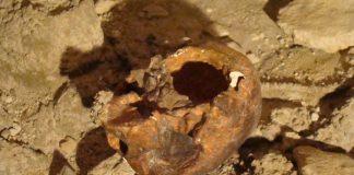 cranio grotta del Circeo