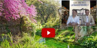Storie: i giardini di Ninfa