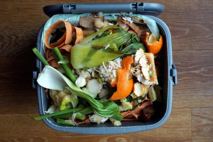 rifiuti compost