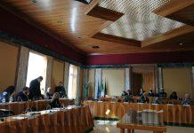 Calandrini Coletta consiglio comunale