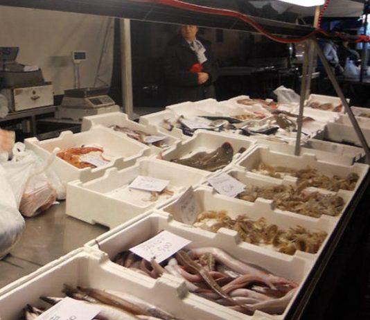 mercato del pesce Gaeta