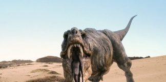 dinosauro Martino