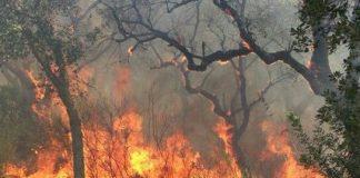 incendi boschivi Itri
