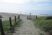disinfestazione spiagge Fondi