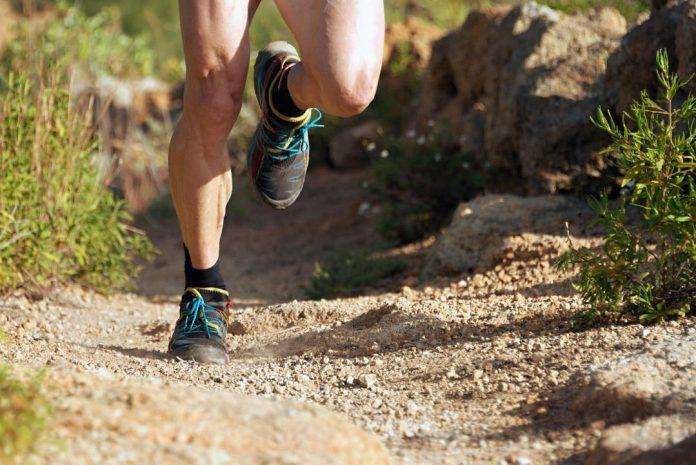 Let's Trail Monti Aurunci