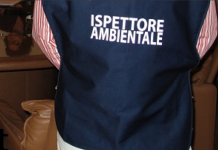 ispettore ambientale