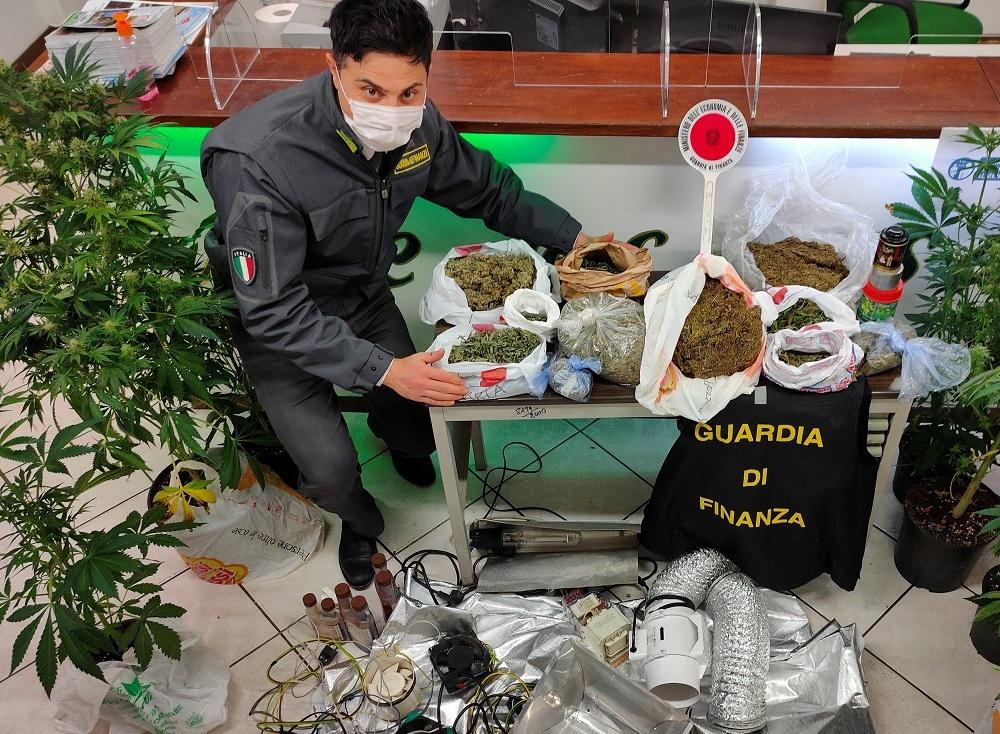 Aprilia, coltivazione di marijuana in casa: arrestato un incensurato